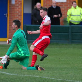 Robins share the spoils with the Gingerbreads