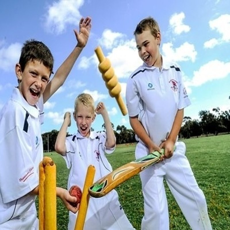 Junior Cricketers  - come and join us!