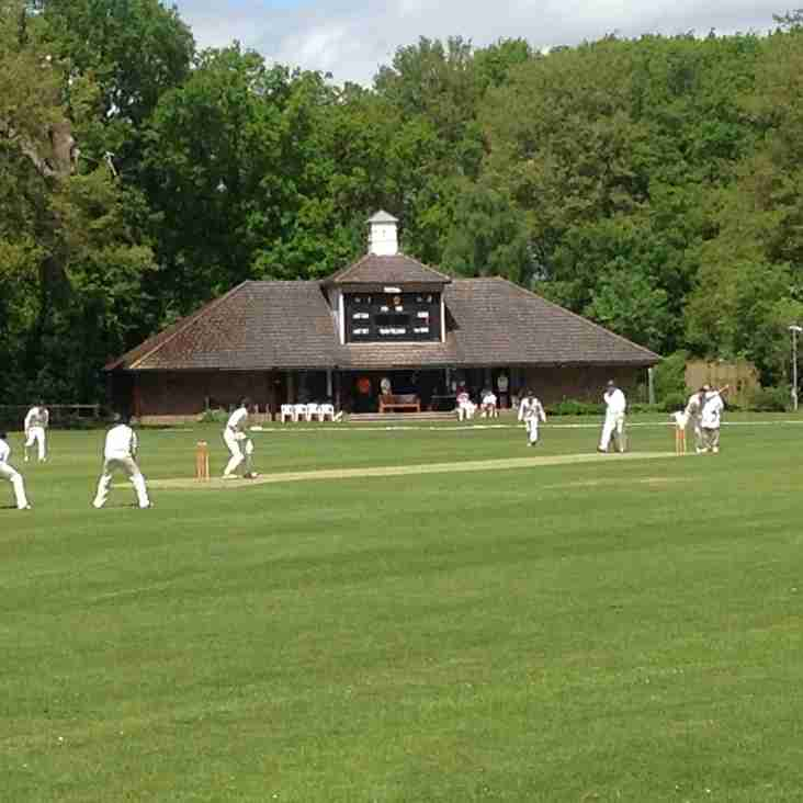 Cricketers Wanted Urgently for Promotional Filming (18's and over)