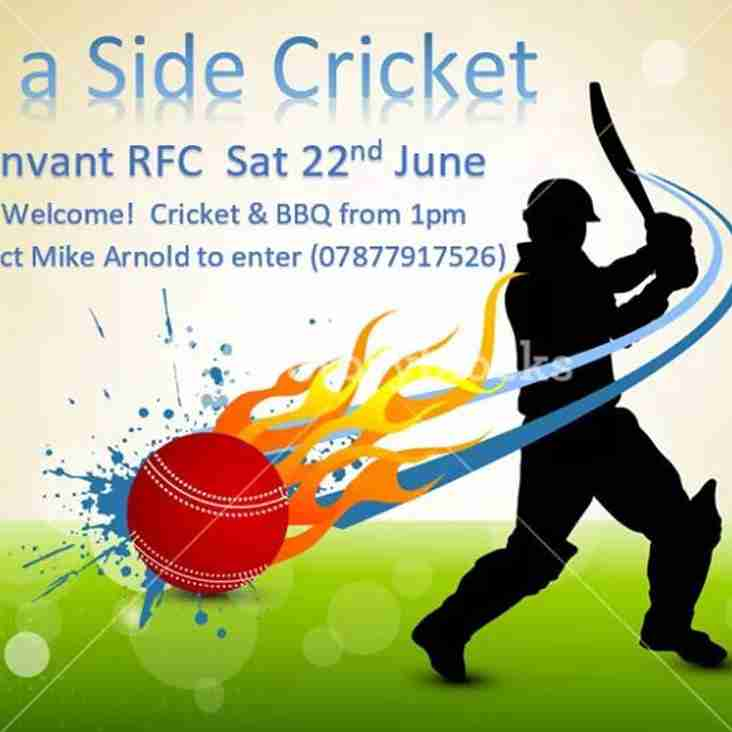 SIX A SIDE CRICKET AT DUNVANT RFC (22nd June)