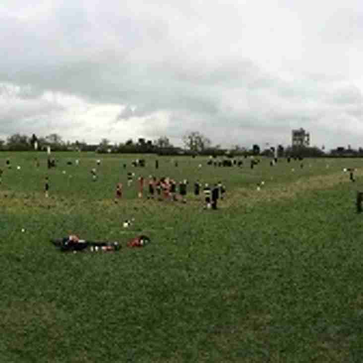 Hampshire Schools Rugby Tournament a great success