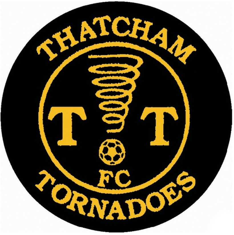 Image result for thatcham tornadoes logo