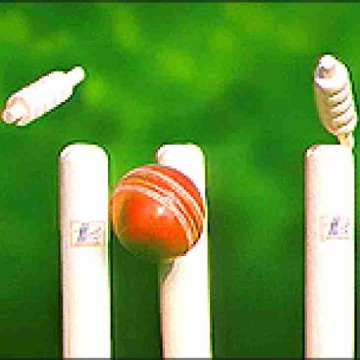 Adult Cricket Season starts this Saturday 4th May