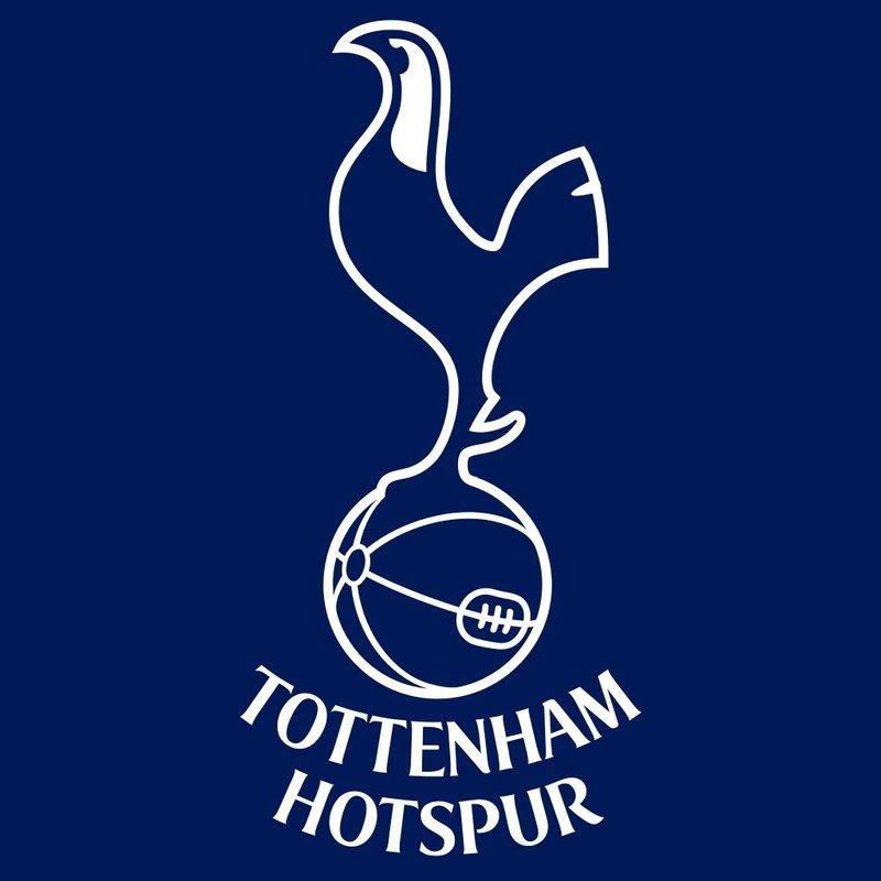 Dulwich Hamlet v Tottenham Hotspur - Pre-season Preview