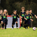 Miniroos Trials Expression of Interest Now Open