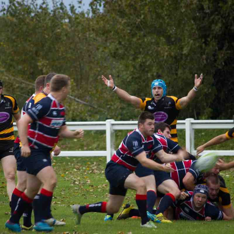 Wasps 1st XV vs Staines RFC
