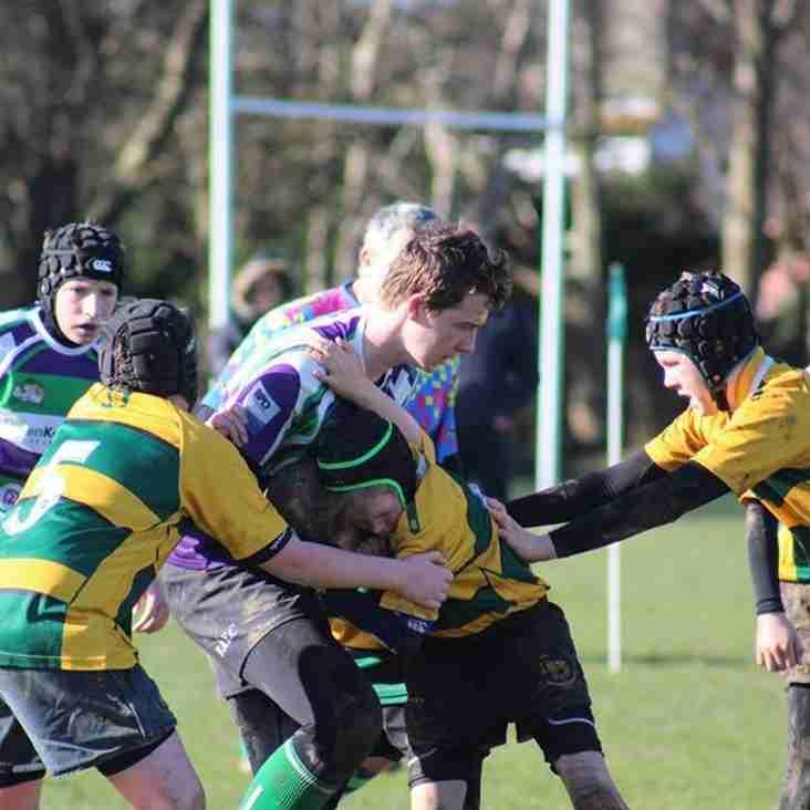 Bulldogs gain revenge over Shoreham