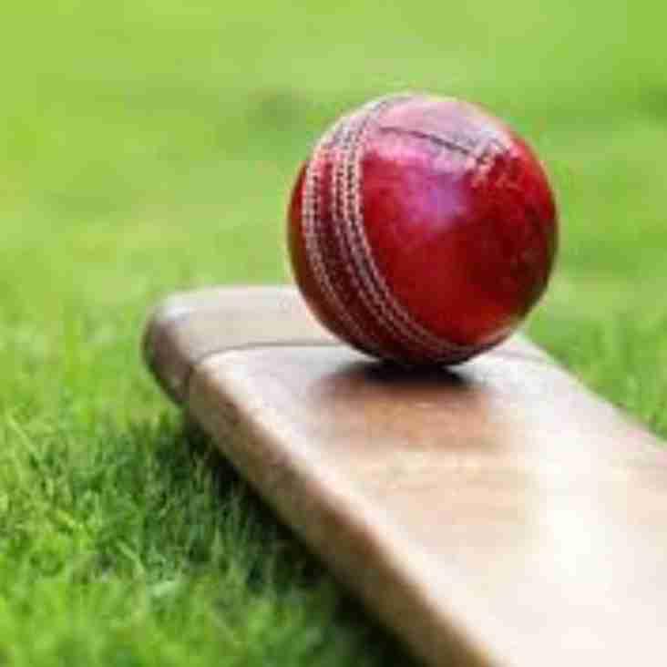 Bedford Ath cricket club is back