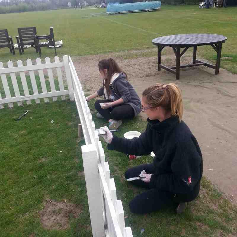 CricketForce 2015