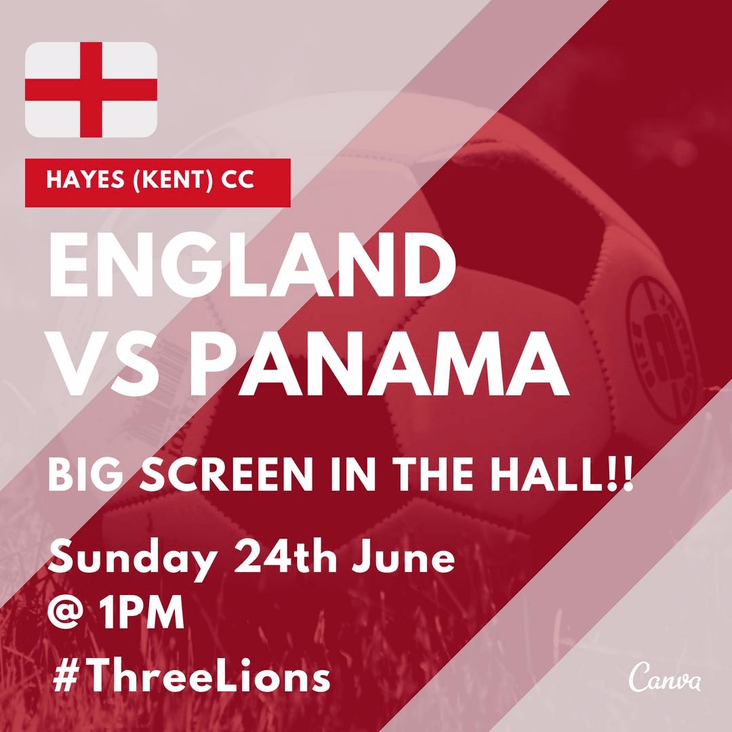 England v Panama WORLD CUP<