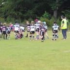 Bulldogs v Lindley Swifts U-8s