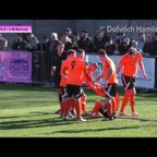 Dulwich Hamlet 0-3 Billericay Town, Ryman League Premier Division, 25/03/17 | Match Highlights