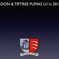 Pumas U11s September 2018 GOTM top 3 winners
